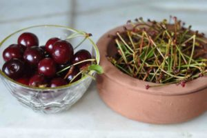 Cherry Stalk Cure For Prostatitis