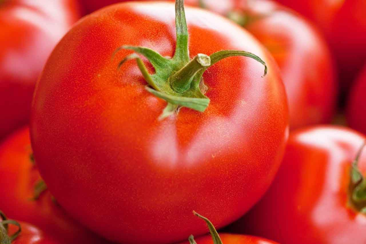 Tomato Cure For Glaucoma